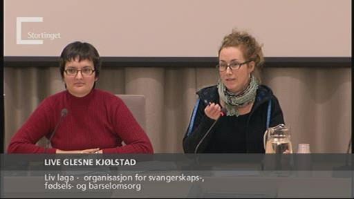 Bilde fra høring